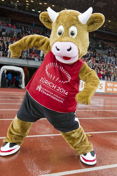 Mistrzostwa w Zurich 2014