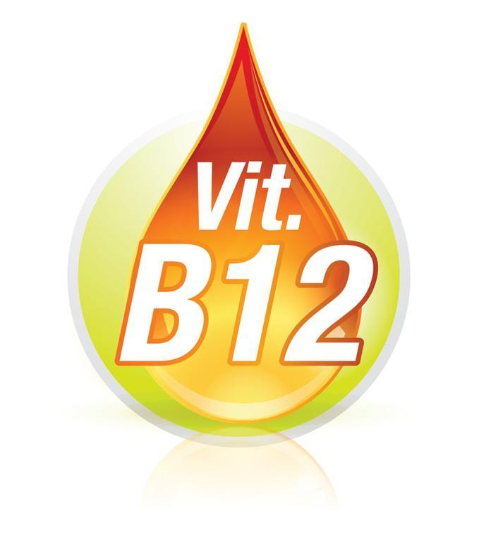 witamina b12 rola